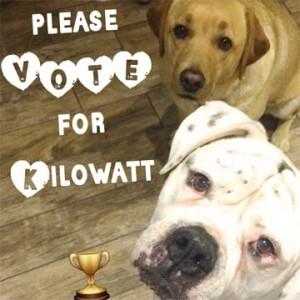 vote-kilowatt.jpg